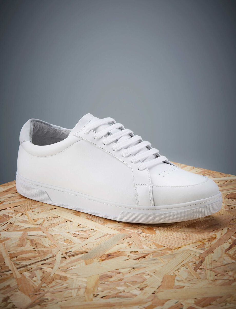 Arne sneakers in White from Tiger of Sweden